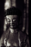 *(Hong Kong) Monastery of Ten Thousand Buddhas*