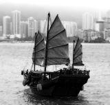 Duk Ling -Junk,  Sail Power Victoria Harbour
