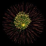 flower of sparks