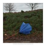 The Dead Umbrellas