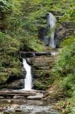 Montour Area Falls