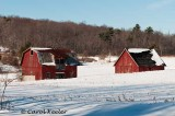 Ithaca Red Barns