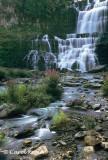 Summer at Chittenango Falls