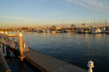 marina_del_rey3.JPG