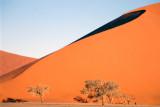 Namibia 1996