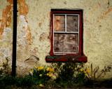 Spring  in the Village