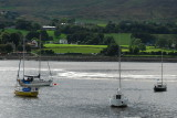 Boats in Carlingford Lough