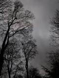 Grey Skies Over Ireland