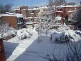 Snowpocalypse II February 2010