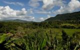 Loei province