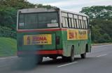 Green Bus but not 'Green'