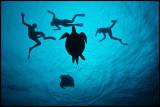 Sipadan Blue Water