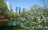 Easter Sunday 2006 in New York