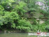 Cedars, Chequest Creek near Pittsburg