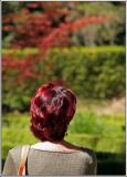Rojo 1.jpg
