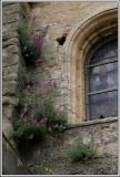 Flores sacras.jpg
