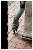 Serpiente.jpg