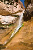 Lower Calf Creek Falls IV