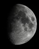 Moon D800E