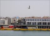 Port of Piraeus #15