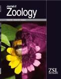 JournalZoologyOct2010_fp.jpg