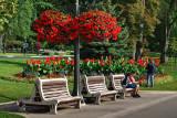 2T1U5427.jpg - Niagara Falls, Canada