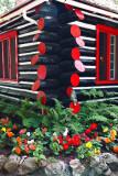 2T1U6195.jpg - Algonquin Provincial Park, ON, Canada