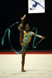190262_gymnastics.jpg