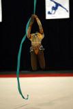 190263_gymnastics.jpg
