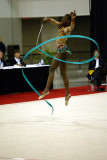 190276_gymnastics.jpg