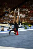 410350ca_gymnastics.jpg
