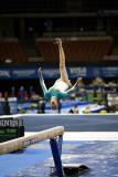 460016ca_gymnastics.jpg