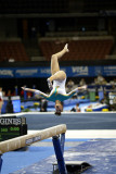 460017ca_gymnastics.jpg
