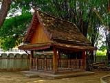 Wooden sala