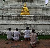Praying at the image of the Buddha