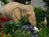 Elephants in a garden