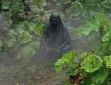 Woman in a mist