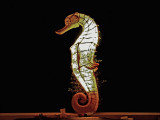 Large seahorse light
