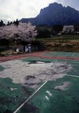 tennis court in disrepair.jpg