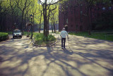 a walk in spring.jpg