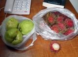 rambutan and guava.jpg