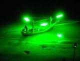 squid boat.jpg
