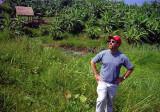 banana grove.jpg