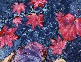 autumn leaves stream.jpg