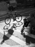 shadow makers.jpg