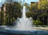 spring oval.jpg