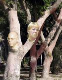 treespirits.jpg
