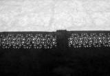 lattice work shadow.jpg