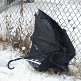 Umbrellas are not common in Moosonee