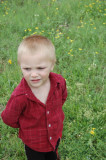Dylan, 3-26-2009 (#6)